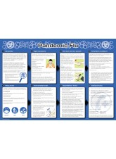 Pandemic Flu Poster 594 x 420mm - Synthetic Paper